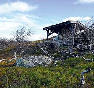 201029 Augneblink Gapahuk Krintofjellet 111020 9823