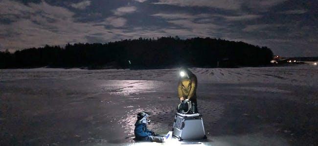 210211 Agneblink-skeising i måneskinn