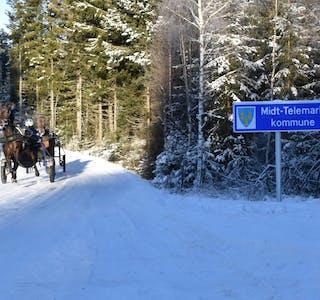 210211 Tråvhest på grensa Midt-Telemark kommune vinter_foto Privat