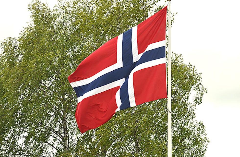 Bø flagg vårbjørk flagg i vind