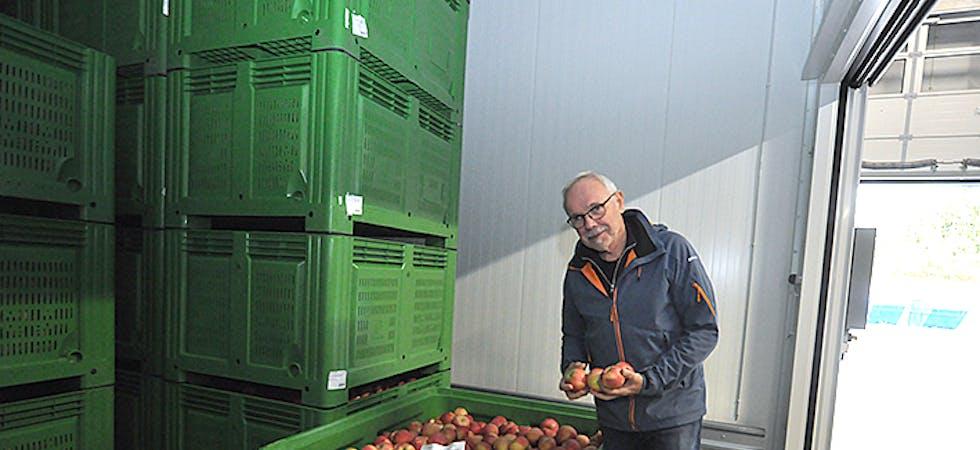 Telefrukt ULO ultralågt oksygen lagring eple langtidslagring vintereple Svein Børte