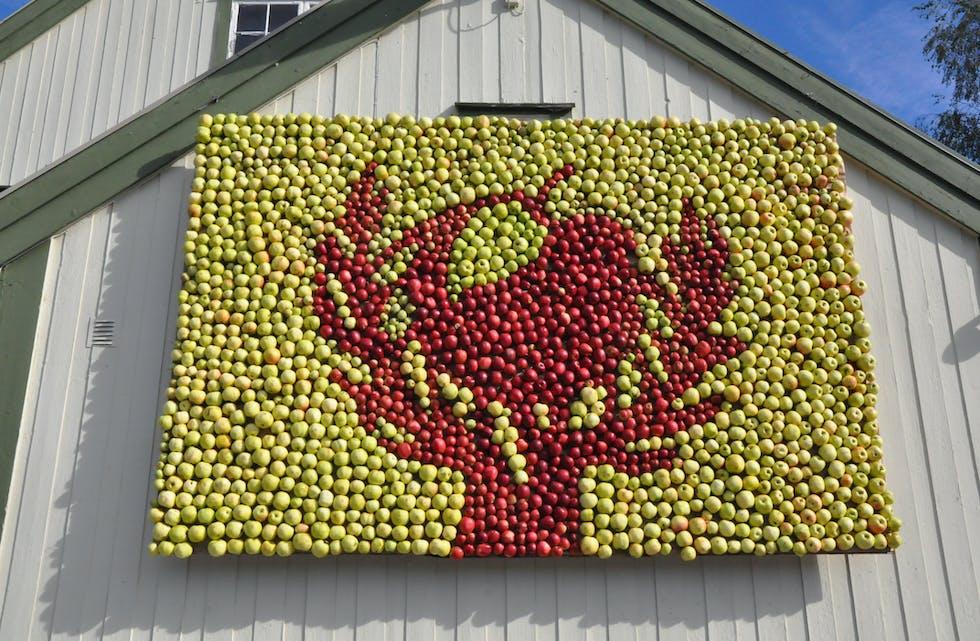 ÅRETS EPLETAVLE: Motivet i år er eit eple i eit tre.