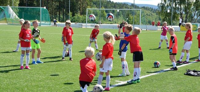 SKARPHEDINIL:Fotballgruppa har fleire tiltak og aktivitetar for barn og unge. Her er det sommarens fotballskule i samarbeid med TINE som samlar mange unge på Sandvoll til aktivitetar og sosialt samvær. Foto: Øystein Akselberg
